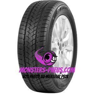 Pneu Davanti Wintoura SUV 245 65 17 111 V Pas cher chez Monsters Pneus